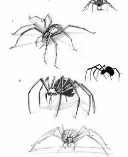 spinnencharakter1.1